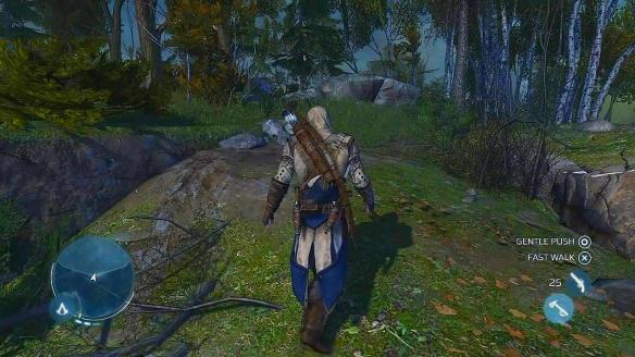 assassins_creed_3_screenshot6