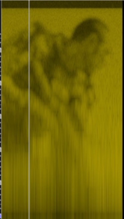 spectrogram-Call of Duty 2014