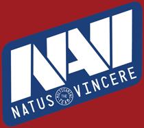 narvi_logo