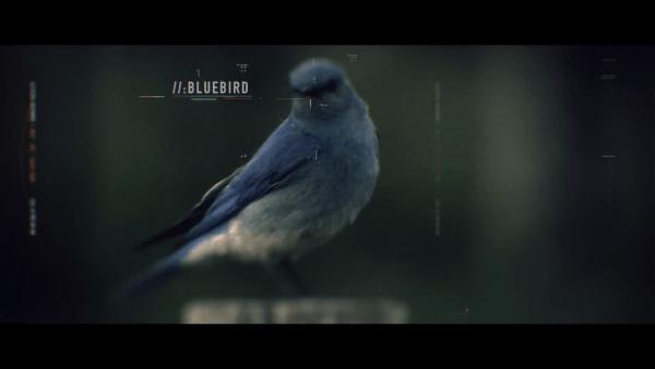 Screen Shot 2015-04-23 at 10.58.24 AM