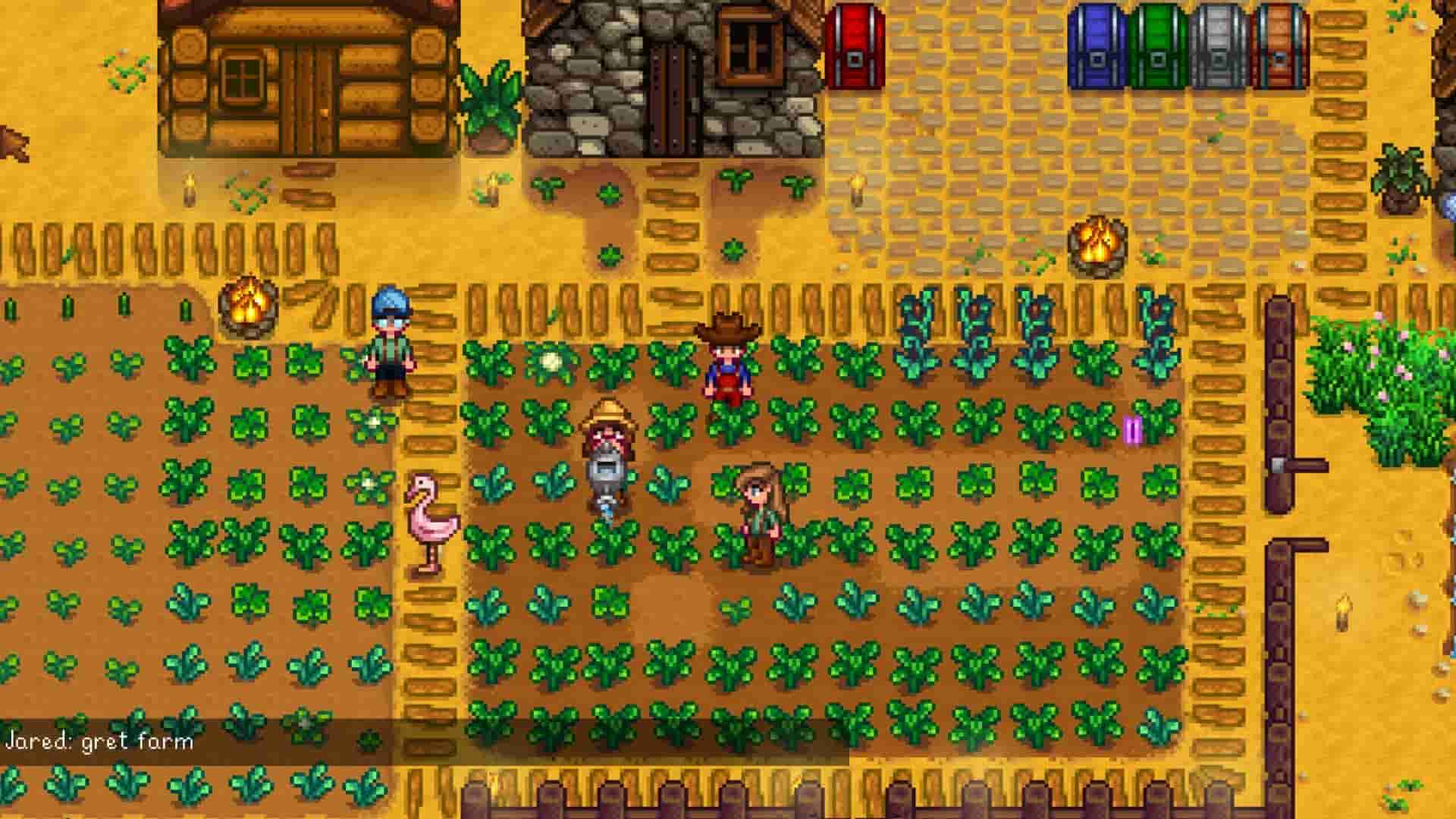 Stardew Valley Multiplayer Gameplay