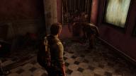 The Last of Us Severed Head Crash Bug