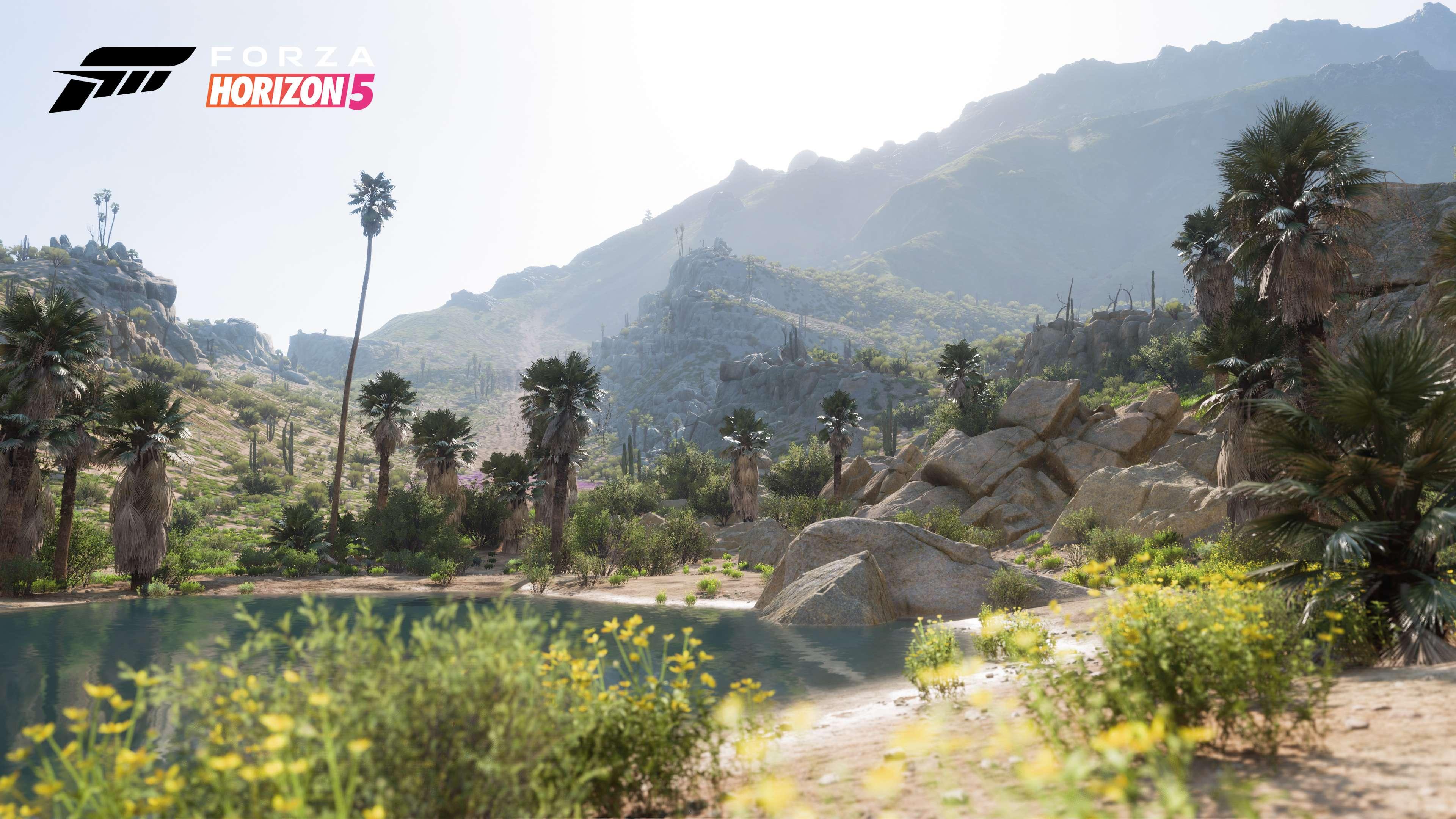 Forza Horizon 5 music